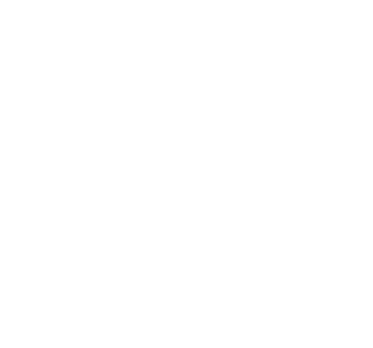 Bottle Service Logo