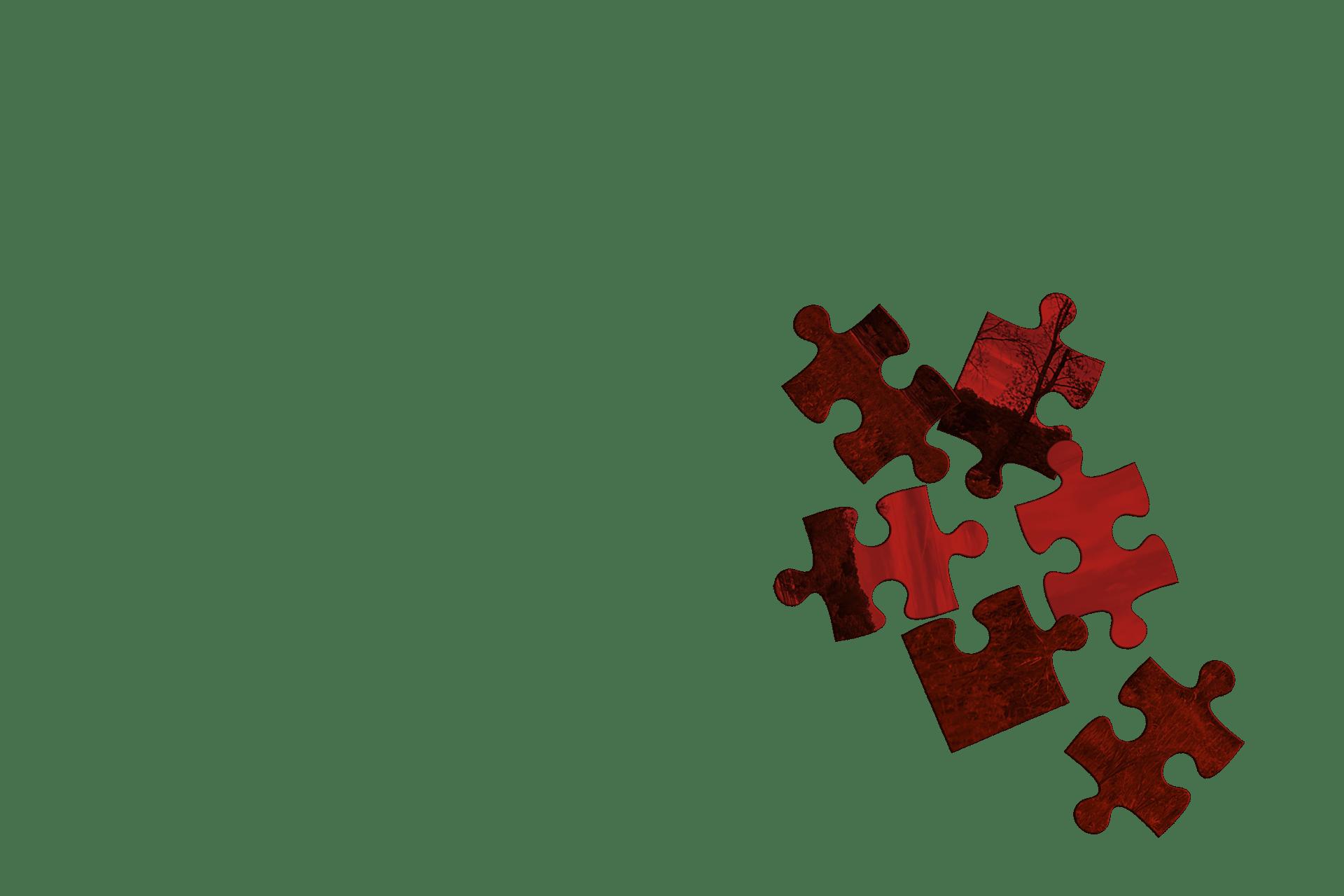 entrep puzzle image