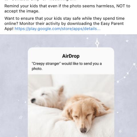 Airdrop - puppies image