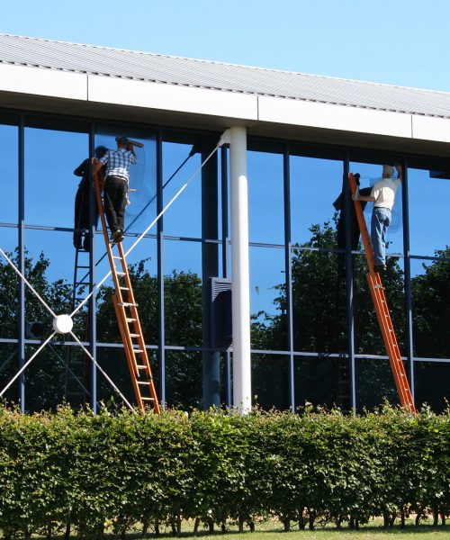 commercial-window-cleaning_men-cleaning-window-using-ladder